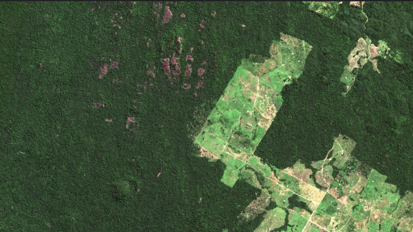 An aerial view of a broad swathe of deforested land surrounded by dark rainforest.